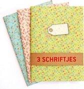 Schriften Groen Blauw Roze - 3 stuks A5 Gelijnd