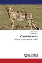 Cheetah- India