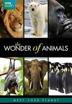 Bbc Earth; Wonders Of Animals
