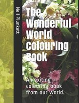 The Wonderful World Colouring Book