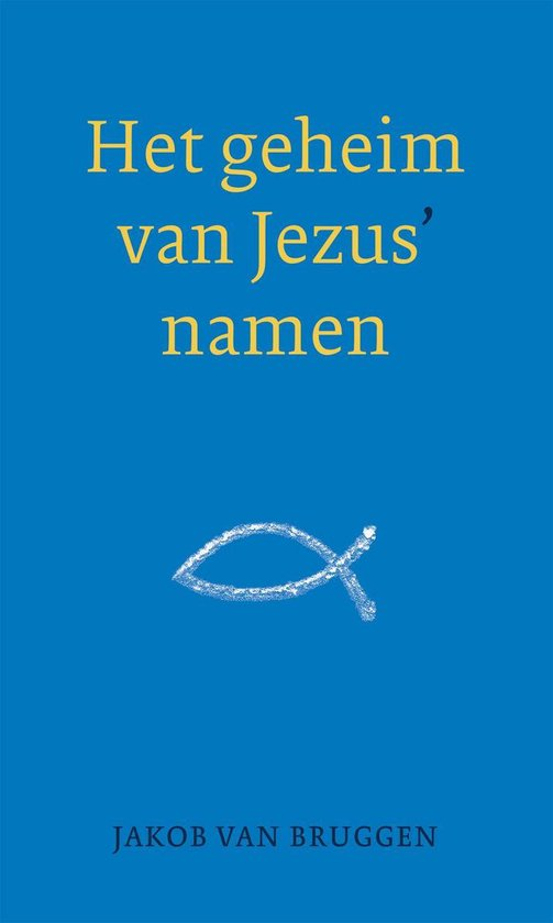 Het geheim van Jezus' namen - Jakob van Bruggen  