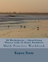30 Worksheets - Identifying Places with 12 Digit Numbers