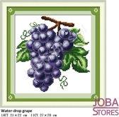"""Borduur Pakket """"JobaStores®"""" Fruit 03 14CT voorbedrukt (21x22cm)"""