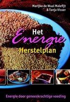 Boek cover Het Energie Herstelplan van M. Waal (Paperback)