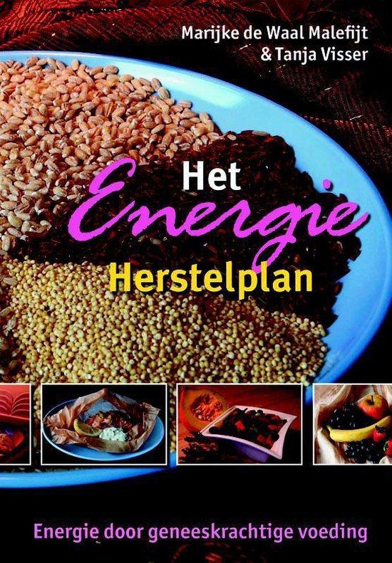 Het Energie Herstelplan - M. de Waal   Fthsonline.com