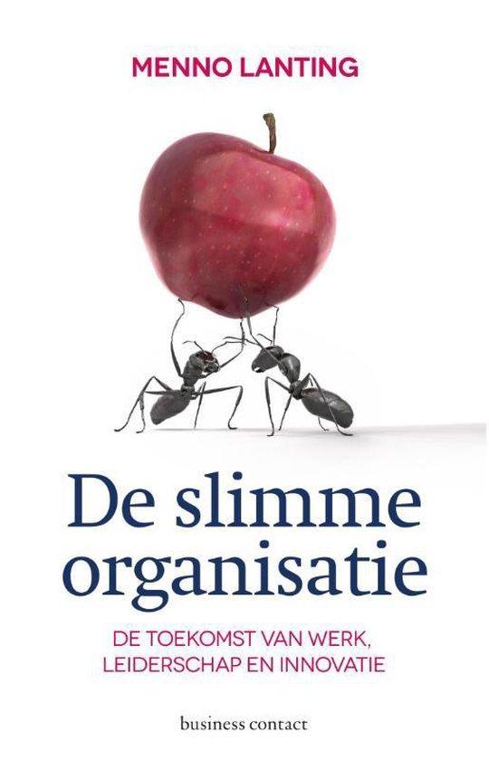 De slimme organisatie - Menno Lanting |
