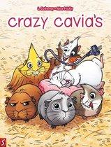 Crazy cavia's 01.