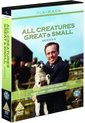 All Creatures Gr. & S.6