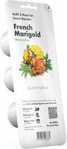 French Marigold Refill 3-Pack (voor Click and Grow Smart Garden toestellen)