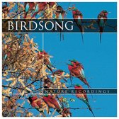 Birdsong (sounds only)