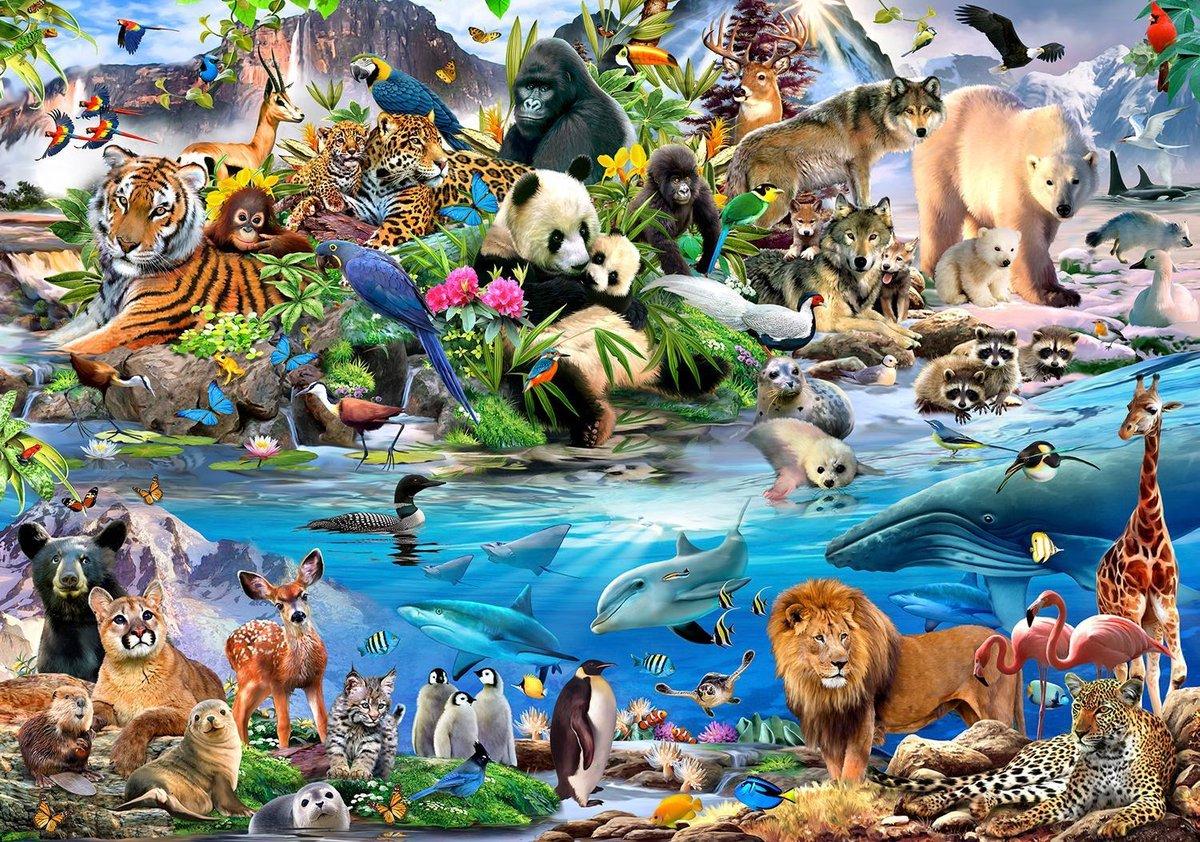 Fotobehang Dieren van de Wereld XXL – kinderkamer – posterbehang - 368 x 254 cm