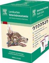Lernkarten Veterinäranatomie/Veterinary Anatomy Flash Cards