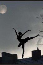 Dancing in the Moonlight Notebook