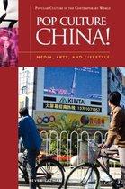 Pop Culture China!