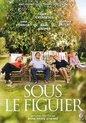 Speelfilm - Sous Le Figuier (Fr/Nl)