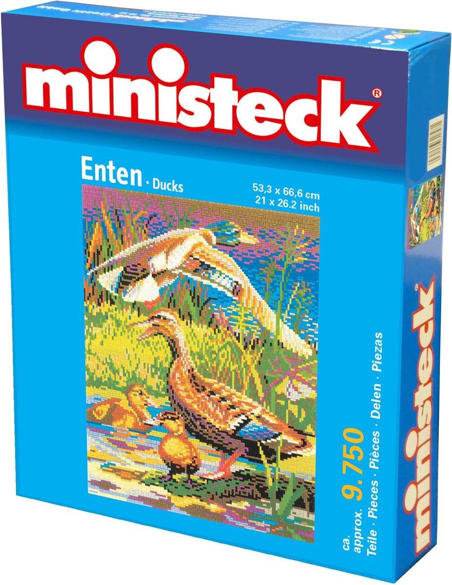 Ministeck: Eenden, ca. 9750 delen