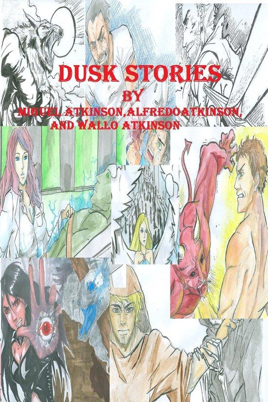 Omslag van Dusk Stories