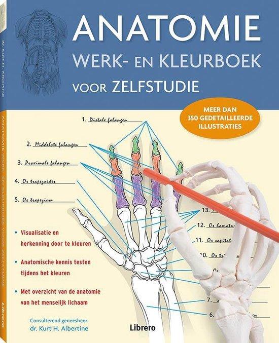 Anatomie werk- en kleurboek voor zelfstudie (nieuwe editie) - Kurt H. Albertine, Ph.D. | Fthsonline.com