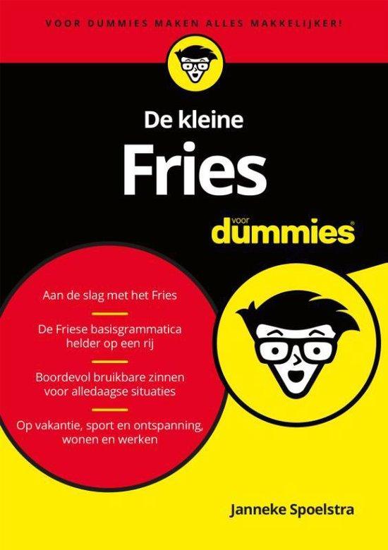 De kleine Fries voor Dummies - Janneke Spoelstra  