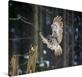 Vliegende bosuil in een bos Canvas 90x60 cm - Foto print op Canvas schilderij (Wanddecoratie woonkamer / slaapkamer)