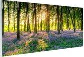 Kleurrijke bloemen in het bos Glas 180x120 cm - Foto print op Glas (Plexiglas wanddecoratie) XXL / Groot formaat!