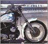 Harley davidson 95 jaar. een overzicht