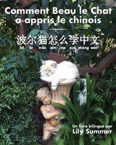 Comment Beau le Chat a appris le chinois