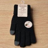 Handschoenen 2020 - Zwart - One Size Fits All - Touch