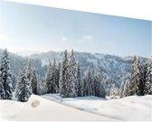 Besneeuwd landschap in Duitsland Tuinposter 60x40 cm - klein - Tuindoek / Buitencanvas / Schilderijen voor buiten (tuin decoratie)