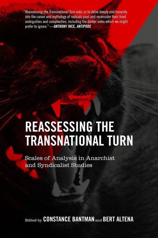 Boek cover Reassessing The Transnational Turn van  (Onbekend)