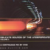 Delicate Sounds of the Underground, Vol.2