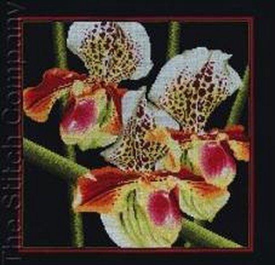 Borduurpakket Orchids Paphiopedilum om te borduren rto m263