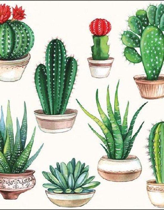 Ambiente Servet 33cm Cactus White