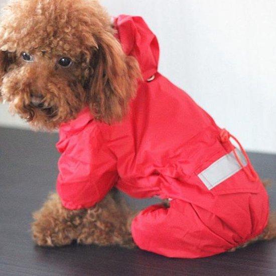 Beste regenjas voor honden – Dit zijn de 4 beste regenjassen voor je hond!