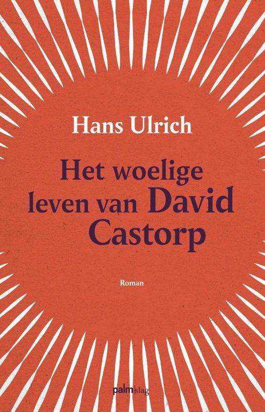 Het woelige leven van David Castorp - Hans Ulrich  