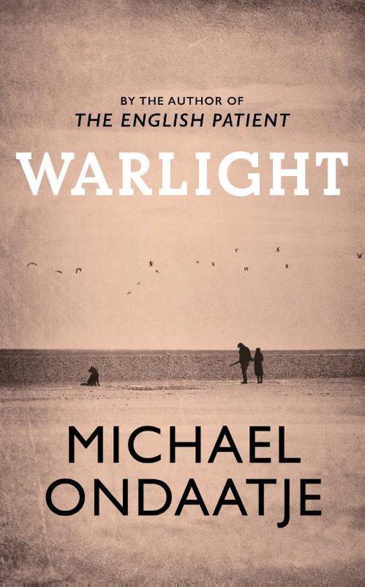 Omslag van Warlight