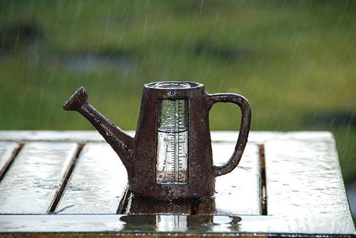Esschert Design Regenmeter gieter/pomp - TA