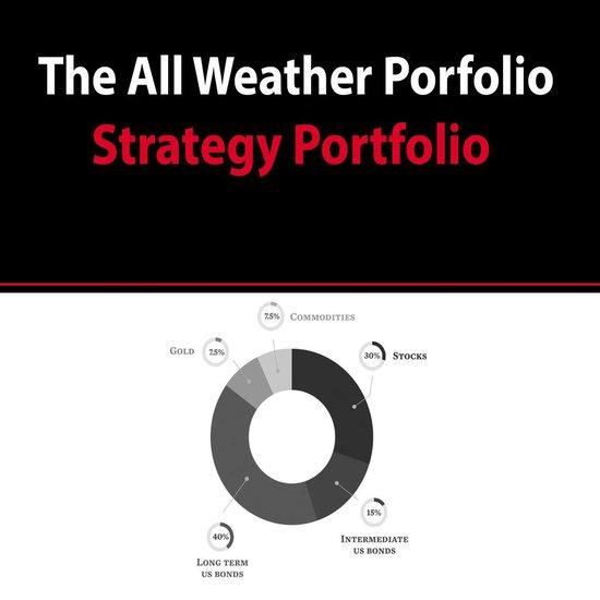 Boek cover All Weather Portfolio Strategy Portfolio van Interactive (Onbekend)