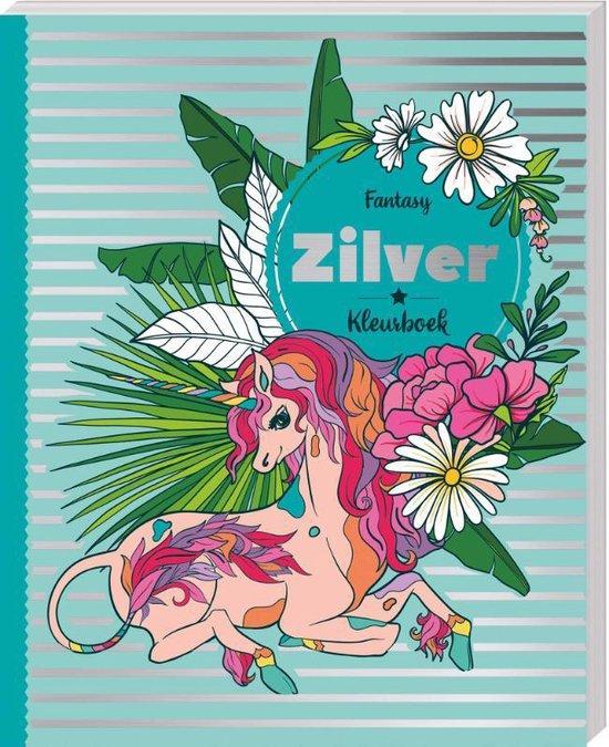 Afbeelding van Fantasy Zilver Kleurboek speelgoed