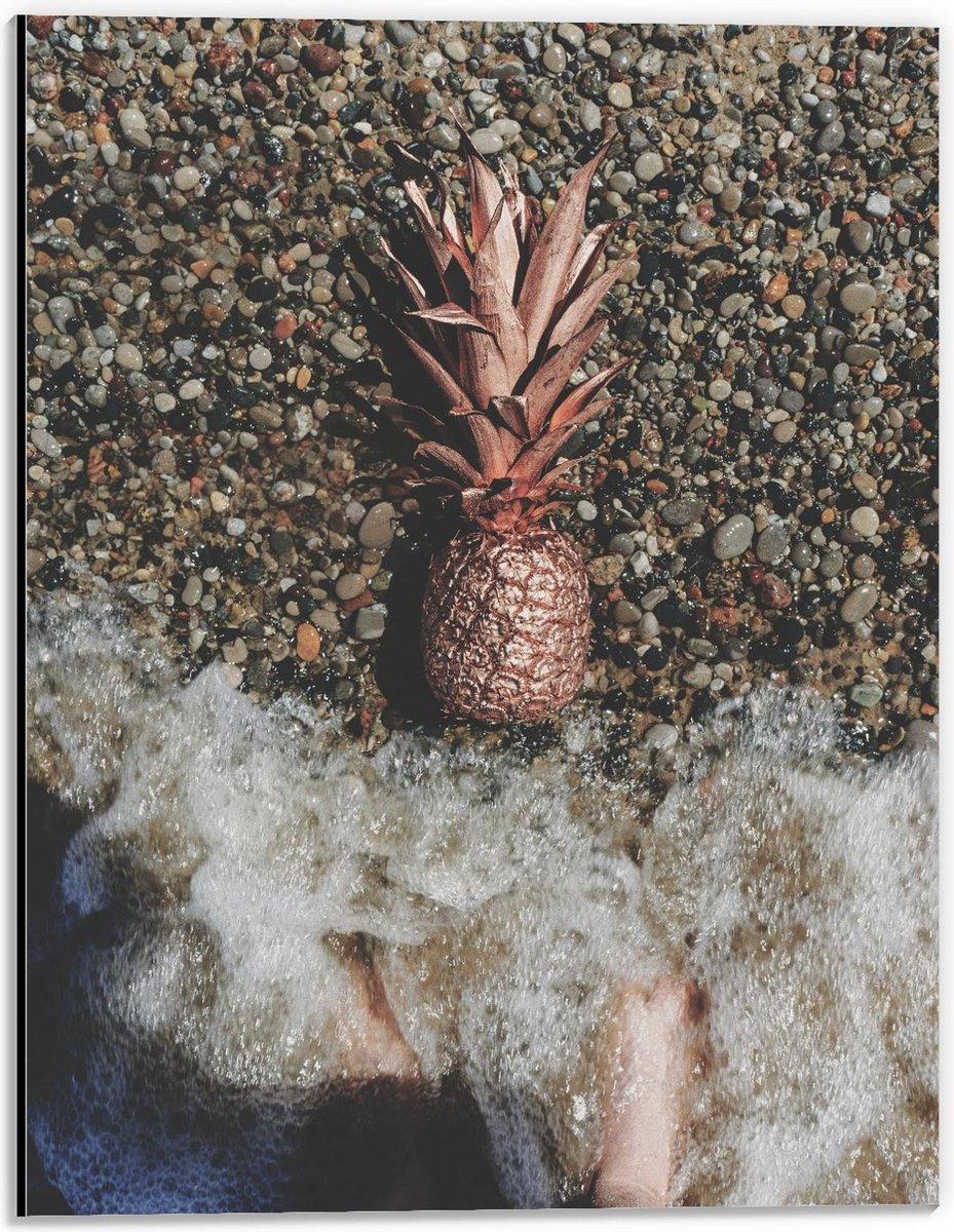 Dibond - Gouden Ananas Spoelt aan - 30x40cm Foto op Aluminium (Met Ophangsysteem)