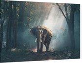 CANVASDOEK OLIFANT | Wanddecoratie | 150 CM x 100 CM | Schilderij | Aan de muur | Dieren | Natuur