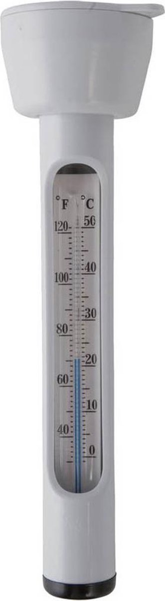Intex - Thermometer Op Blister