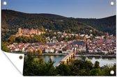 Luchtfoto van de stad Heidelberg en het Slot Heidelberg 90x60 cm