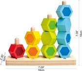 Hape Toys E0504 educatief speelgoed