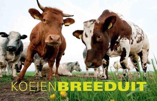 Breeduit - Koeien Breeduit - Peter Beemsterboer |