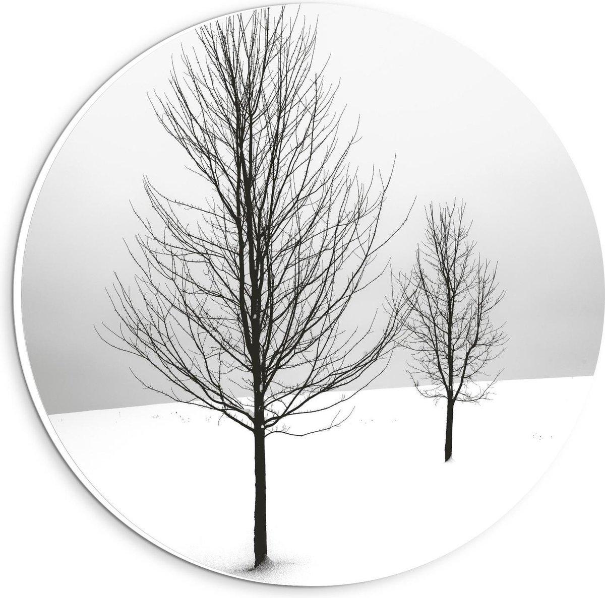 Forex Wandcirkel - Bomen op Besneeuwd Gebied - 20x20cm Foto op Wandcirkel (met ophangsysteem)