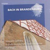 Bach in Brandenburg