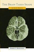 The Brain Takes Shape