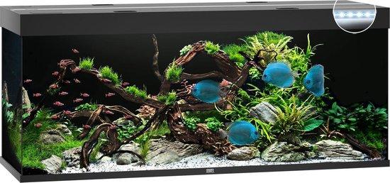 Juwel Aquarium Rio 450 Led 151x51x66 cm Zwart Ca. 450 L - Juwel