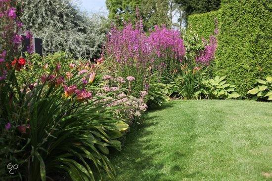 ECOstyle Tuinmest - 5 kg - algemene tuinmeststof voor 50 m2